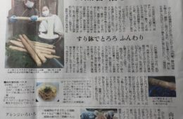 読売新聞 掲載のお知らせ